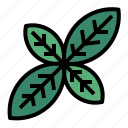 basil, herb icon