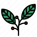 bayleaves, herb icon