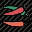 chilli, herb icon