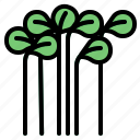 cress, herb icon