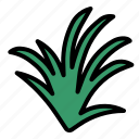 herb, lemongrass icon