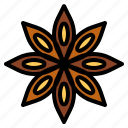 herb, staranise icon