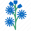 chicory, food, herb, vegetable icon