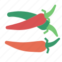 chilli, food, herb, vegetable icon