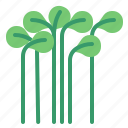 cress, food, herb, vegetable icon