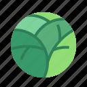 food, ginkgobiloba, herb, vegetable icon