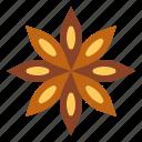 food, herb, staranise, vegetable icon