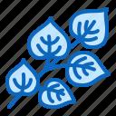 herb, linden, medicinal, plant icon