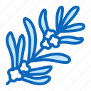 herb, medicinal, plant, rosemary icon