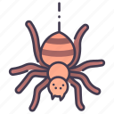 danger, fear, halloween, horror, insect, poison, spider icon