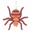 danger, fear, halloween, insect, poison, scary, spider icon
