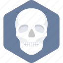 bones, face, skeleton icon