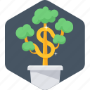 money plant, plant, ecology, green icon