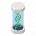 chromosome, dna, dna helix, dna research, gene, genetic cell, inheritance cell