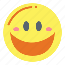 emoticon, face, happy, smiley