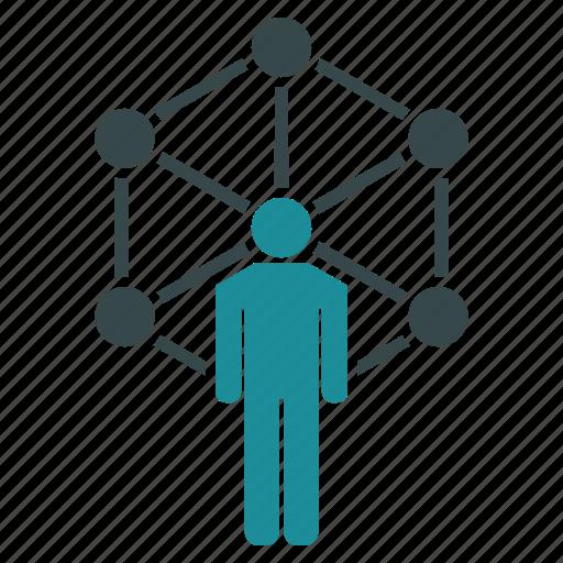 communication, connection, marketing, network, system, web icon
