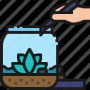 terrarium, plant, garden, decor, hobby