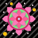flower, india, pattern, rangoli