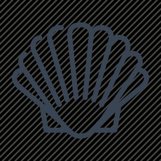 clam, scallop, shell, shellfish icon