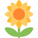 flower, nature, sun, sunflower icon
