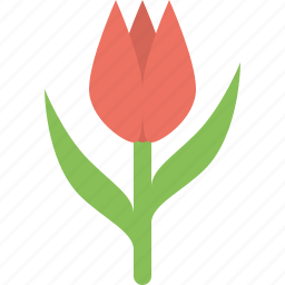 flowe, nature, tulip icon