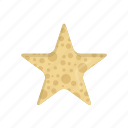 animal, beach, ocean, sea, seastar, star, starfish icon