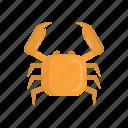 animal, beach, cancer, crab, food, restaurant, seafood icon