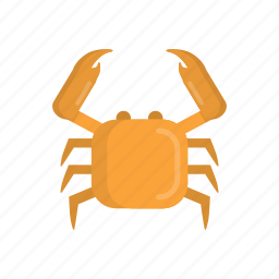 animal, beach, cancer, crab, food, restaurant, seafood icon