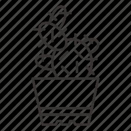 cactus, comfort, eco, grow, home, plant, pot icon