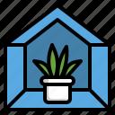 decor, indoor, plant, room, tree icon