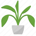 garden, green, grow, plant, tree icon