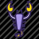 animal, horoscope, scorpio, scorpion, sign, zodiac