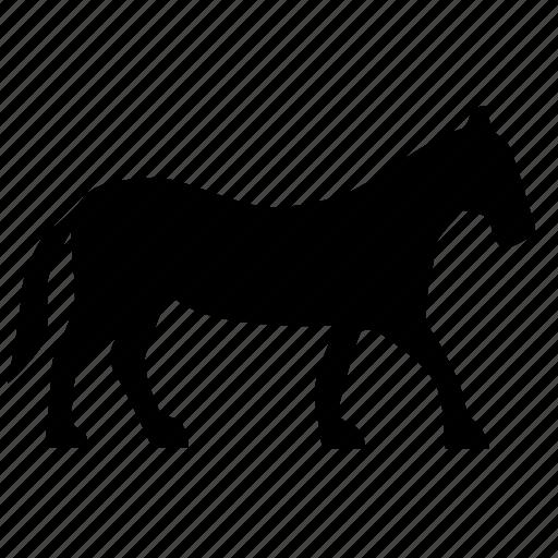 animal, horse, lucky, riding, wild icon