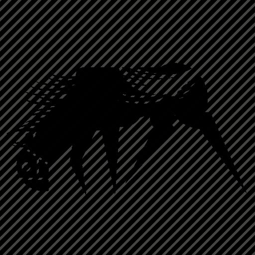 animal, horse, mare, nature, pony, power, stud icon