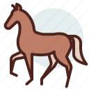 animal, domestic, equestrianism, horse, pose1, ride icon