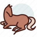 animal, domestic, equestrianism, horse, pose10, ride icon