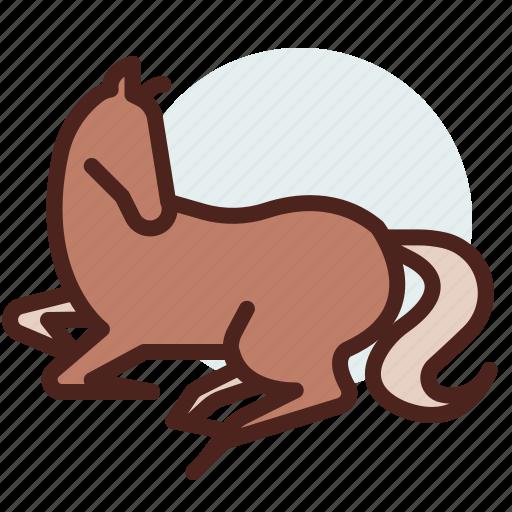 animal, domestic, equestrianism, horse, pose10, ride icon