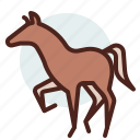 animal, domestic, equestrianism, horse, pose2, ride icon
