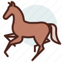 animal, domestic, equestrianism, horse, pose4, ride icon