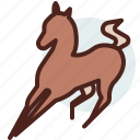 animal, domestic, equestrianism, horse, pose5, ride icon