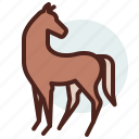 animal, domestic, equestrianism, horse, pose6, ride icon