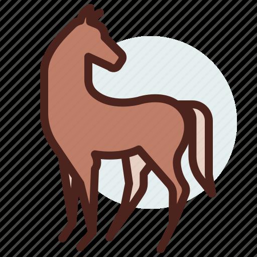 animal, domestic, equestrianism, horse, pose6, ride icon