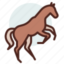 animal, domestic, equestrianism, horse, pose7, ride icon