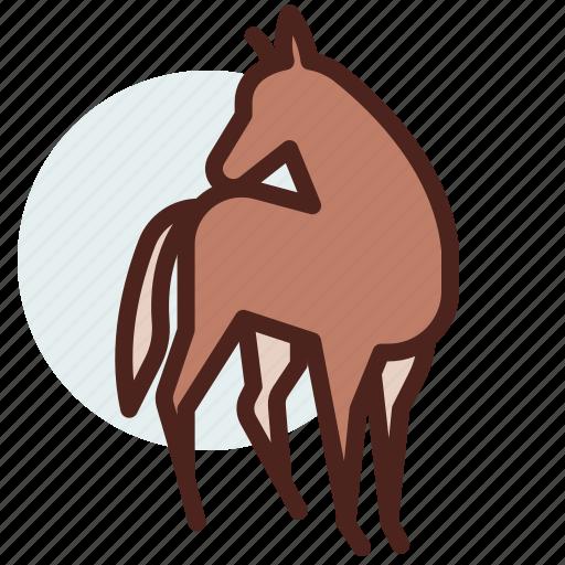 animal, domestic, equestrianism, horse, pose8, ride icon