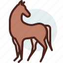 animal, domestic, equestrianism, horse, pose9, ride icon