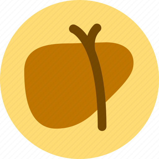 adipose, hepatic, hospital, infiltration icon