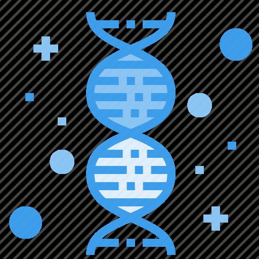 chromosome, dna, gene, genetic, genome, hospital icon