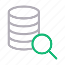 database, hosting, magnifier, search, server icon