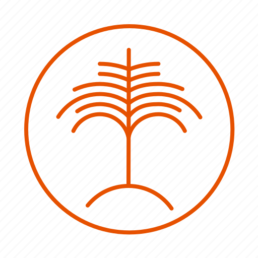beach, palm, plant, tree icon