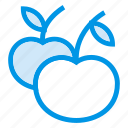apple, cherry, food, fruit, fruits, healthy, sweet icon
